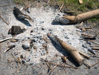 Das Feuer einer Feuerstelle sicher löschen