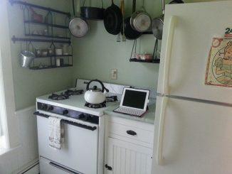 Auch im Ofen lassen sich Lebensmittel trocknen