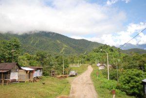 Ursprünglichkeit erleben – der Manú Nationalpark in Peru