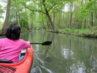 Trekking im Spreewald - zu Fuß oder auf dem Wasser