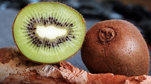 Kiwis sind Vitaminbomben