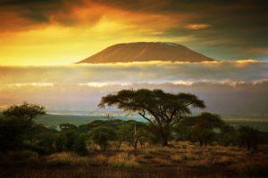 Der Kilimanjaro - Der höchste Berg Afrikas