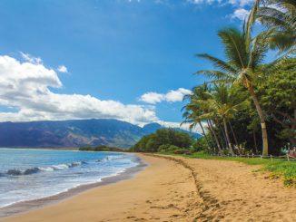 Maui - das Ziel für den unvergesslichen Inseltrek