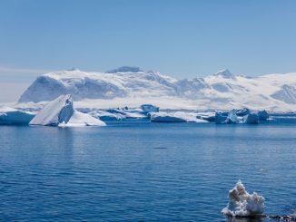 Antarktis - den weißen Kontinent erleben