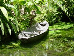 Mit Boot oder zu Fuß den Amazonas entlang