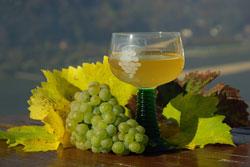 Ein besonderes Highlight - die Weinprobe
