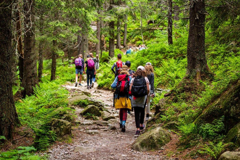 Wandern gesund